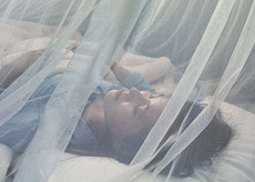 http://reglo.org/posts/world-malaria-day-end-malaria-for-good-6183